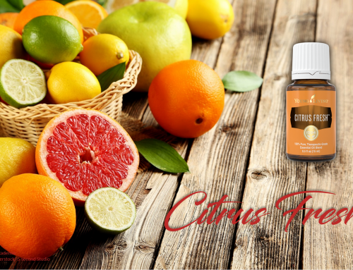 Oil of the week: Citrus Fresh