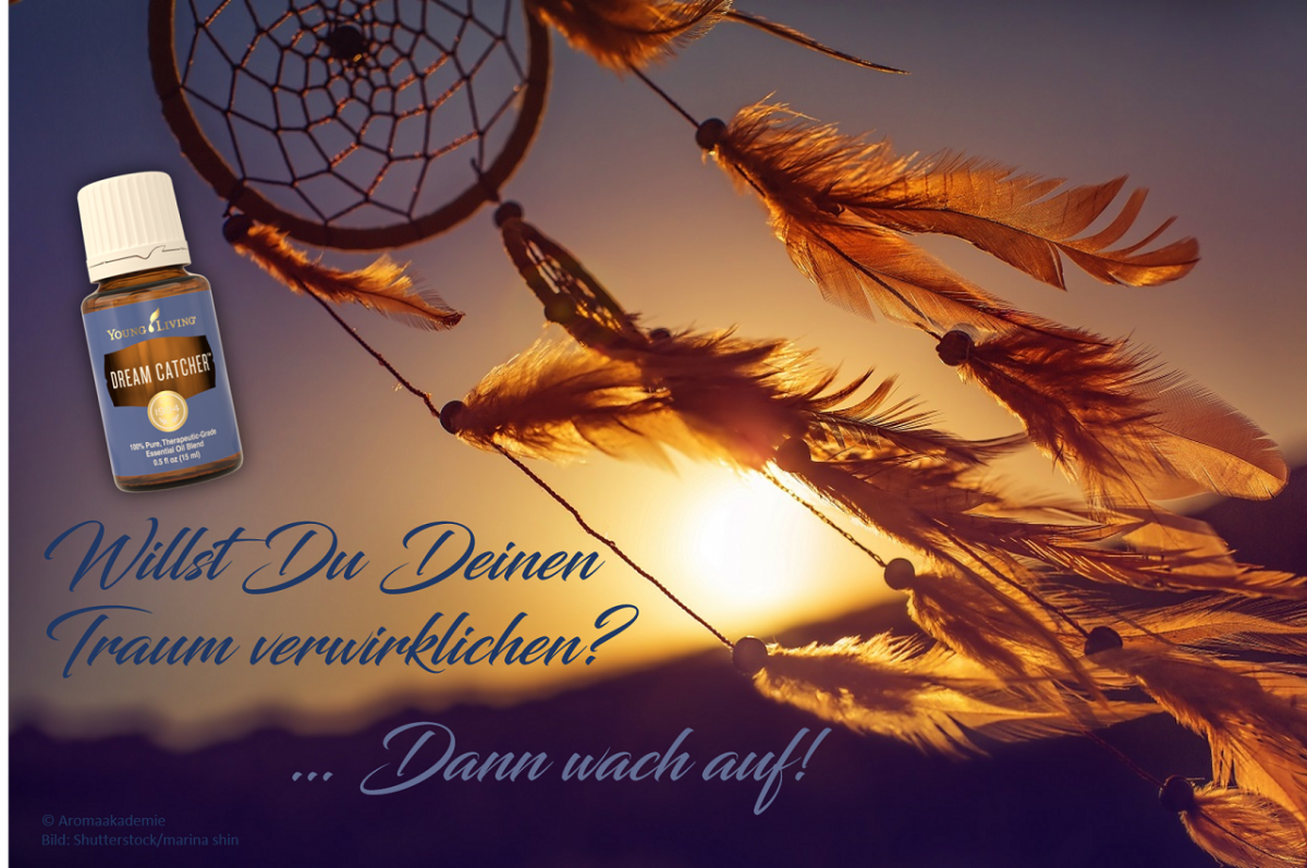 Oil of the week: Dream Catcher