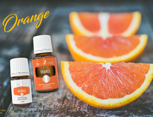 Oil of the week: Orange