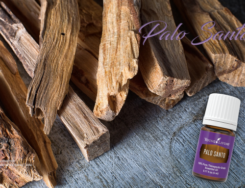Oil of the week: Palo Santo