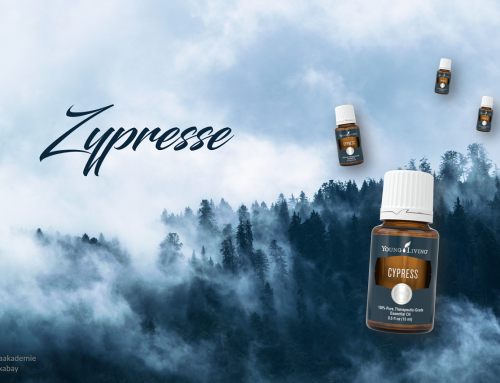 Oil of the week: Zypresse