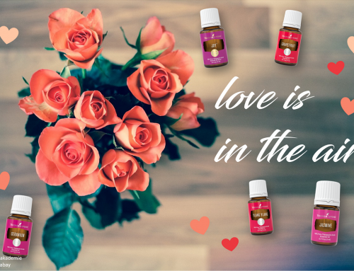 Love is in the air: Valentinstags-Diffusermischungen
