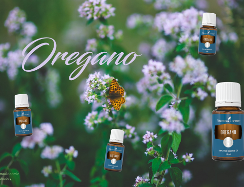 Oil of the week: Oregano
