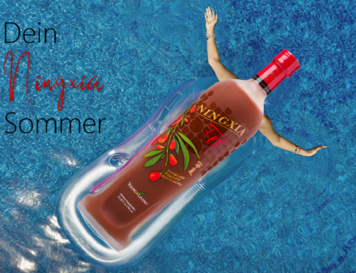 DIY: 3 sommerliche Ningxia Red Rezepte