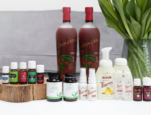 "Das ""Wellness Warrior"" Kit mit Ningxia"